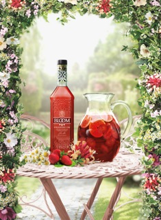 BLOOM_STRAWBERRY CUP LIFESTYLE WITH JUG