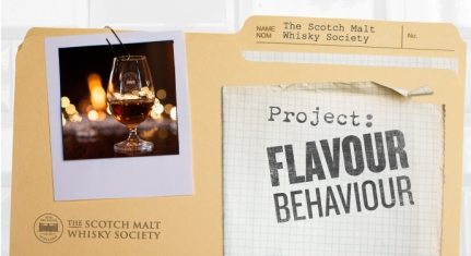 FlavourBehaviour_Banner_NOText[1]